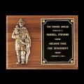 TS-P7-X Award